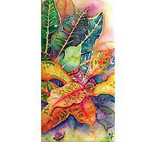 """Croton Series 1"" Silk Painting Photographic Print"