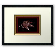 """"""" Feng Shui """" Framed Print"""