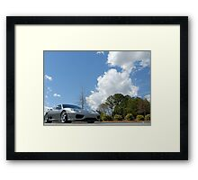 Earthbound Exotic Framed Print