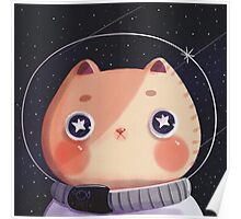 Cat Astro Poster