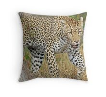Leopard on the hunt-running! Throw Pillow