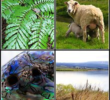New Zealand Wall Montage by VickieP