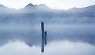Posts in the Fog by Odille Esmonde-Morgan