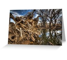 Rooted...but not the one by Brad Grove Greeting Card