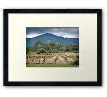 Moody Mountain... Framed Print