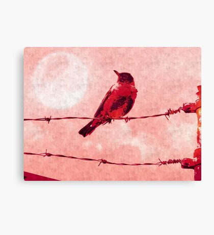 Bird on the Wire Canvas Print