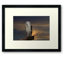 Early Evening Hunting Framed Print