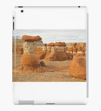 Natural Sculptures iPad Case/Skin