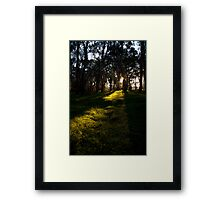 Light Rays Framed Print