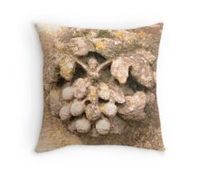 Embellishment St Georges church Falford Gloucester. Throw Pillow