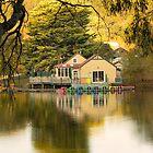 Autumn in Daylesford by Danka Dear