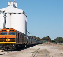 Grain Train by Matthew Reid