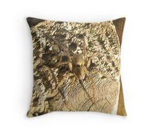 Spider hunting. Throw Pillow