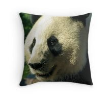 "Wang Wang (""Net Net"") Throw Pillow"