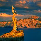 Crater Lake Sage by Dragomir Vukovic