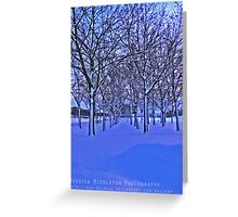 Wintry Avenue Greeting Card
