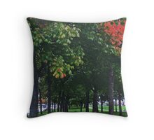 Autumnal Avenue Throw Pillow