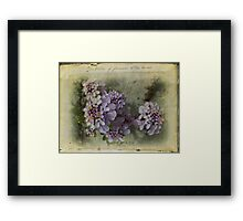 Illustration of flowers at the beach Framed Print