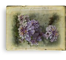 Illustration of flowers at the beach Canvas Print