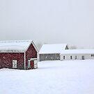 April 1st Blizzard - The Lindscott Farm by T.J. Martin
