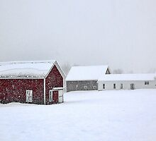 April 1st Blizzard - The Lindscott Farm by T.J. Martin