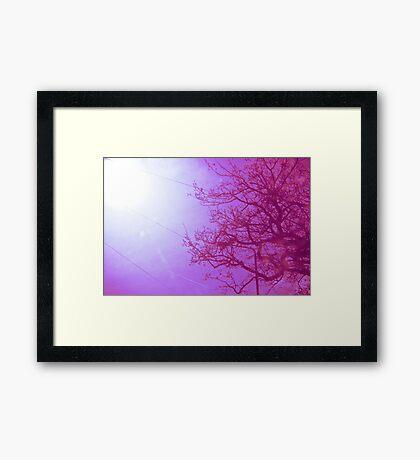 Her infinite variety Framed Print