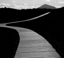 Murlough the Mourne Mountain Path by ragman