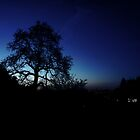 Night Shot Silhouette  by AndrewBerry