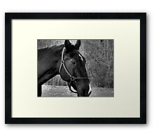 The Eyes Say it All... Framed Print