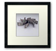 USD Framed Print