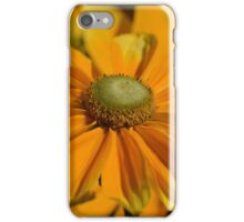 Sunshine in my Garden iPhone Case/Skin