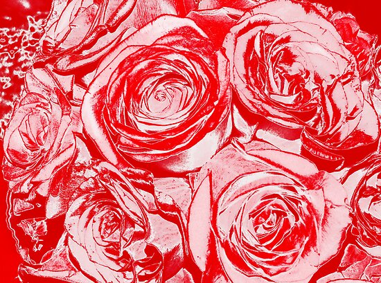 A Rose is just a Rose by Marcia Rubin