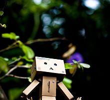 Danbo the Adventurer by jughead149
