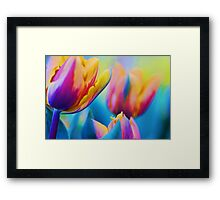 Colour My World.... Framed Print