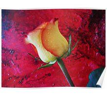 Yellow Rosebud Poster