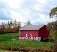 (Barn calendar) The Red Barn and the Willow in Fall by vigor