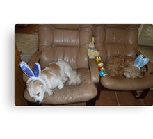 Two Very Tired Easter Bunnies Canvas Print