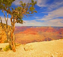 """""""Alone On The Rim"""" by JohnDSmith"""