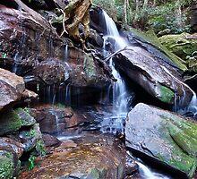 Bottom Falls Somersby..2-4-11. by Warren  Patten