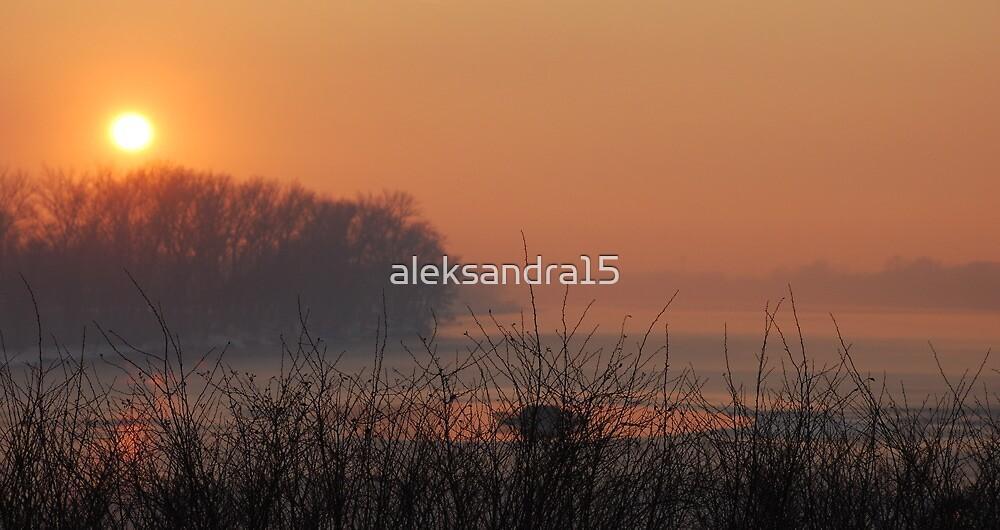 Orange sunset by aleksandra15
