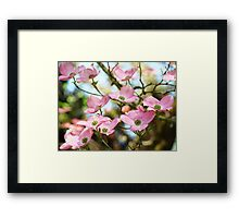 Trees Pink Dogwood Tree Flowers art Baslee Troutman Framed Print