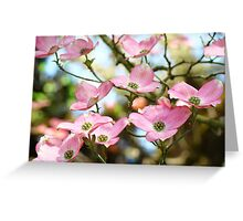 Trees Pink Dogwood Tree Flowers art Baslee Troutman Greeting Card