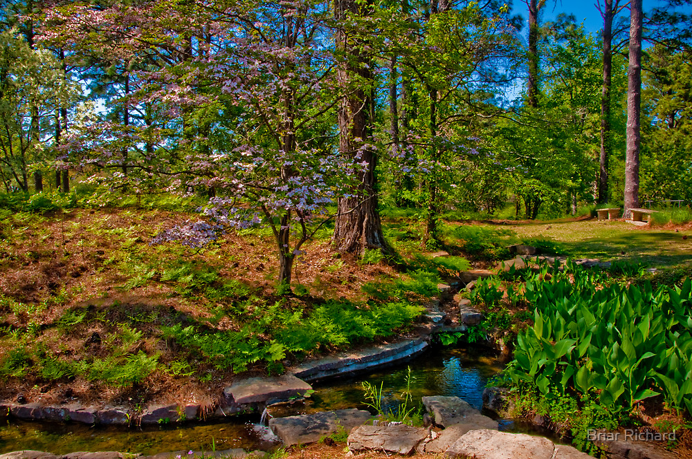 Springtime, Hodges Gardens State Park (HDR) by Briar Richard