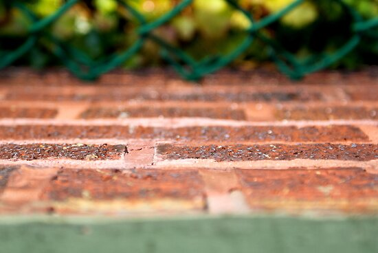 Bricks and Ivy - Wrigley Field by boukou9