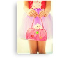 a little hamster in the pink bag Canvas Print