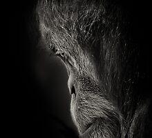 Pensive by Natalie Manuel