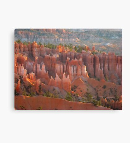Bryce Canyon look Canvas Print