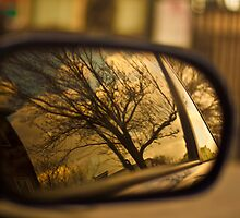 Side view mirror by bjohnson0311