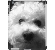Bichon Frise - Black and White iPad Case/Skin