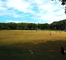 UP sunken garden by iamYUAN